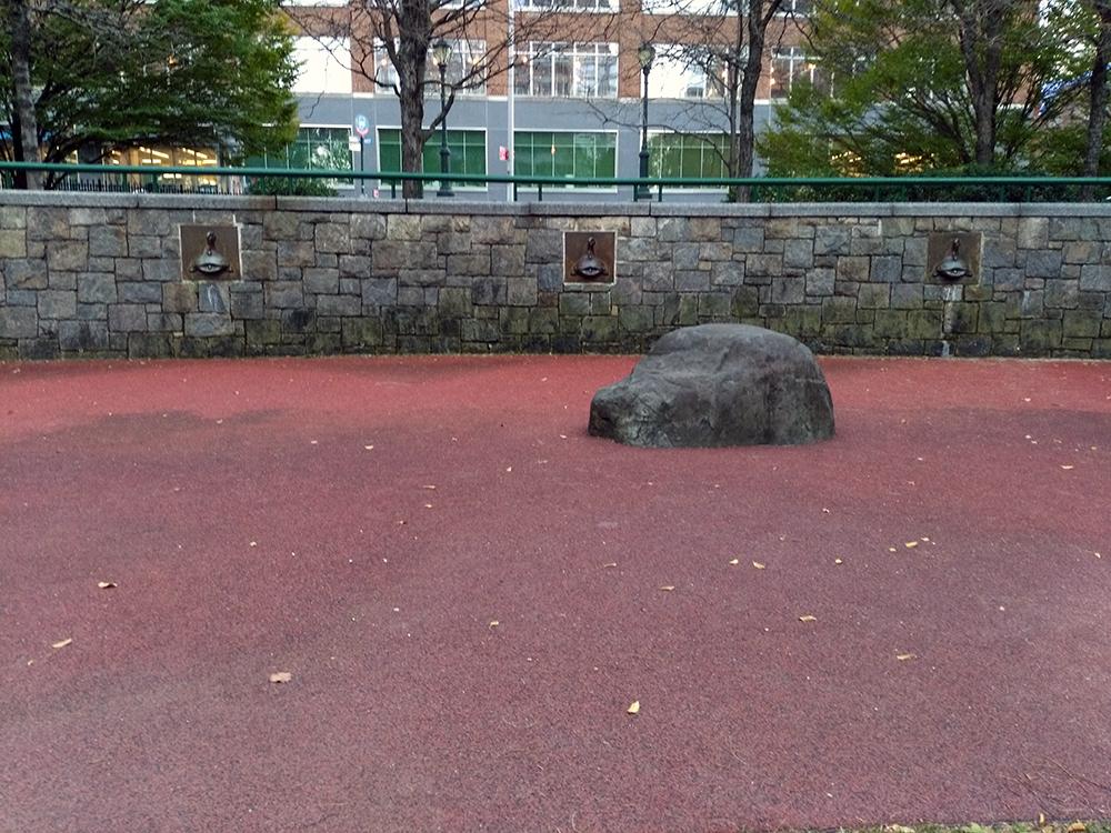 この写真の中の岩だけ登ったり飛んだりする時に要注意ですが、他の公園よりもかなり広めの水場スペースです。