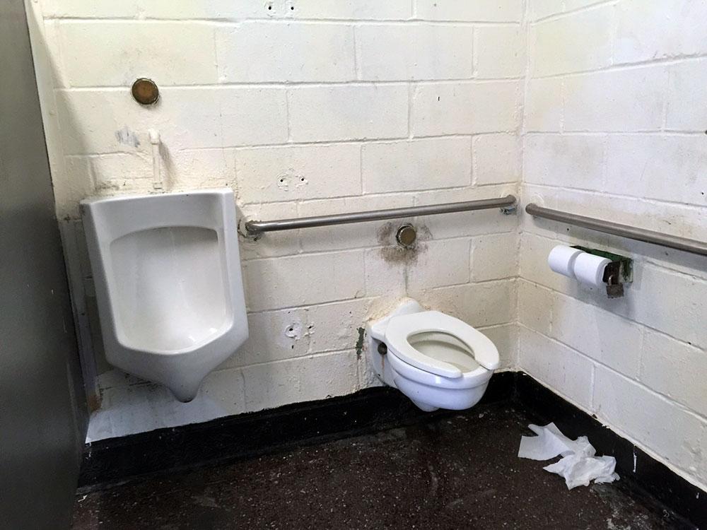 なかなかパンチの効いたトイレではあります。