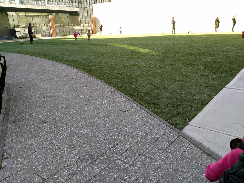 入口入って右側に遊具。左手に広い芝生コーナーがあります。